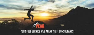 Peak full service web design and computer consultant